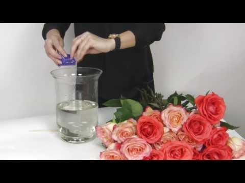 Как сделать чтобы букет роз стоял дольше