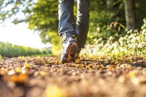 чем полезны прогулки для здоровья