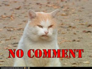no-comment-cat