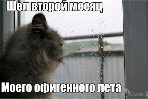 Картинки про холодную погоду летом